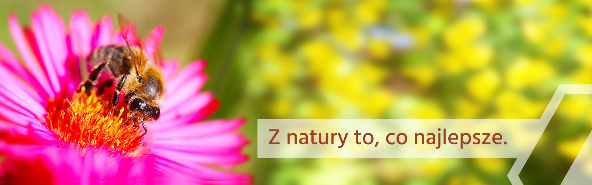 Z natury to, co najlepsze.